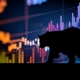 RSMR: Weekly Broadcast - Bear markets and the future of the economy